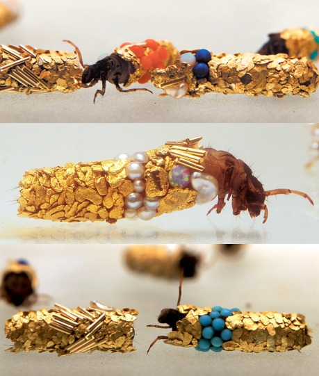 Hubert Duprat, 'Caddis', Jewel encrusted fly larvae.