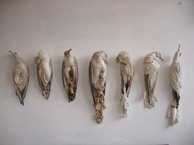 Jane Howarth, 'Bonne Bouche' series. Taxidermied seagulls with pearls, leather gloves and other jewelry
