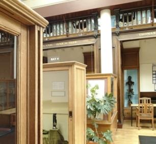 The Museum of Anatomy, University of Glasgow.