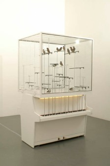 Robert Gligorov's installation with canaries playing pianos