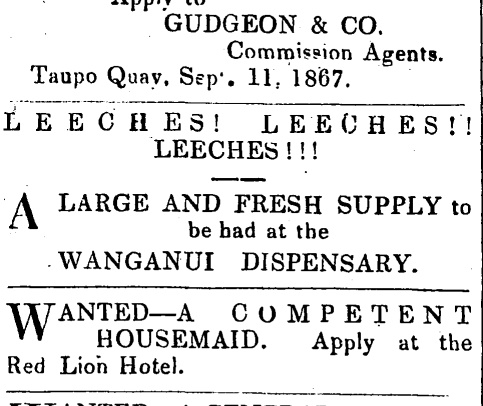 Leeches! Leeches!! Leeches!!! An excitable ad for fresh leeches from the Wanganui Dispensary. Wanganui Herald, 11 September 1867, pg 3.
