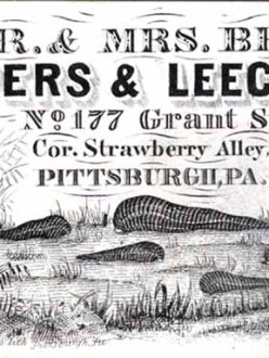 Vintage advertisement for Mr and Mrs Bese Cuppers and Leeches.