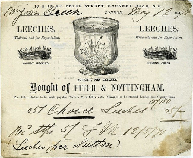 An invoice for 57 choice leeches from Fitch and Nottingham in London, sold to Swindon businessman Mr John Green, 12 May 1870
