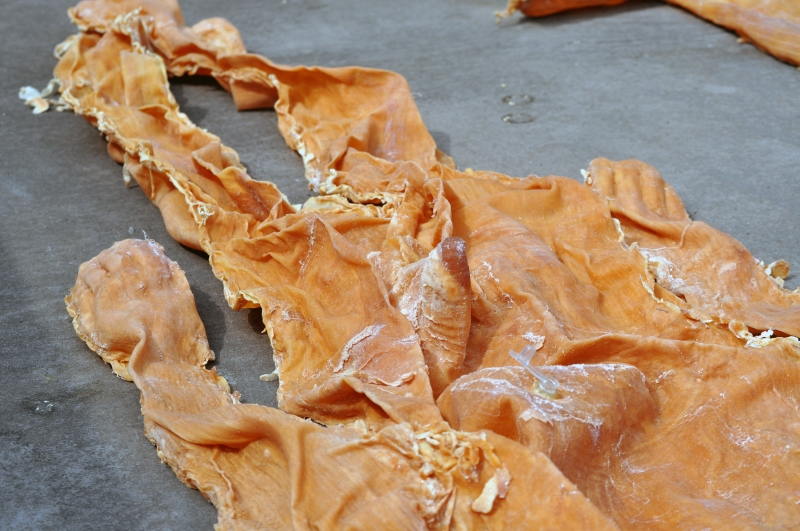 Detail of James Lomax's sculpture of inflatable skins.