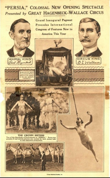 A variety of acts from the circus.