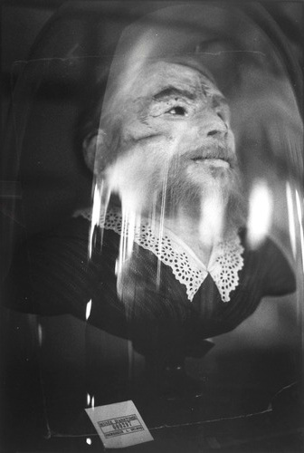 Zoe Leonard, 'Preserved Head of a Bearded Woman, Musee Orfila', 1991. From a series of five silver gelatin prints. Centre Pompidou, Paris.
