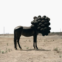 Horses, balloons, bunnies and smoke: Surreal photographs by Andrea Galvani