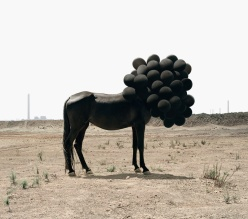 Photograph by Andrea Galvani of black horse with head covered by black balloons.