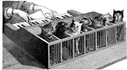 Illustration of a cat organ from La Nature, 1883