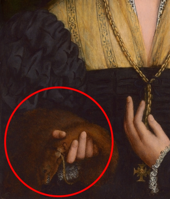 Painting detail of a noblewoman holding a brown weasel with vicious looking teeth