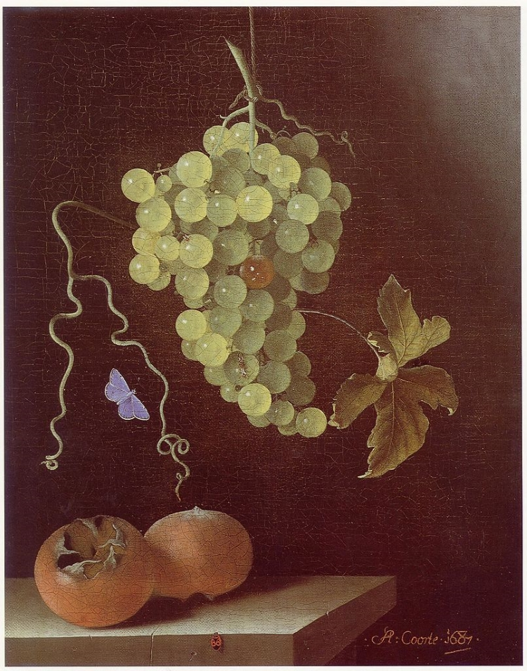 Oil painting of a hanging cluster of grapes, purple butterfly and two medlar fruits against a black background