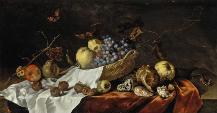 Still life painting of a table covered with shells, medlar fruits, grapes and branches. A butterfly flies over the table, and a small lizard sits to the right.