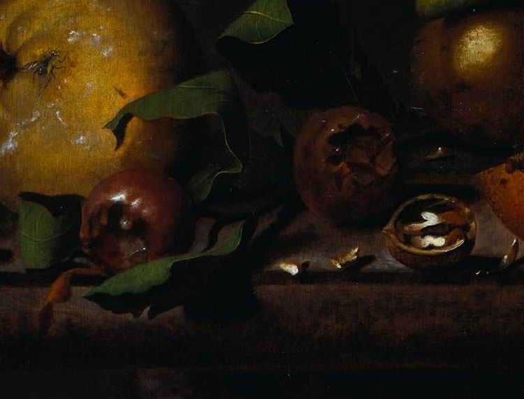 Detail of still life showing two medlars against a quince